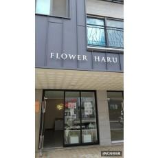 [성남 간판] FLOWER HARU, 레이저 비조명 스카시
