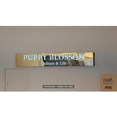 [동탄간판] PUPPY BLOSSOM 티타늄 간판